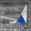 pixeltickler userpic