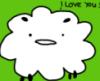 sheep ily
