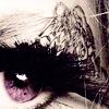 darkshines_x userpic