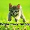 martisha_vl userpic