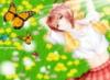 Юлия Гришина: бабочки