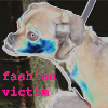 fashion victim