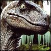 JP Raptor