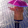 some_day_soling: Rain