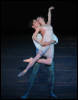 Fleegull: Romeo & Juliet