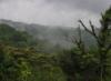 Costa Rica mist