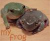frog - MINE