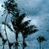 Florida - rain