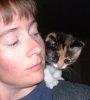 blk: kitten