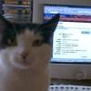 hideouscat userpic