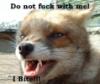 Jericho Grey Foxx