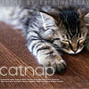 Almighty Empress Of The Universe: Cats: Catnap
