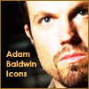 Adam Baldwin Icons