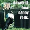 laur: how he rolls
