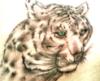 tigriz userpic