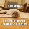 I R DUNE CAT