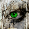 thorns userpic