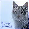 холодный кот