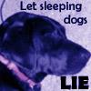 jerseydogg userpic