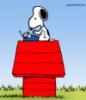 little_snoop userpic