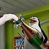 silver_chipmunk: penguin