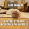 dune-cat