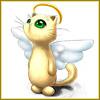 Rioky: angel_cat