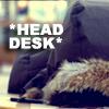 *Head Desk*