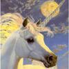 unicorn moon