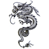 dragon graphic