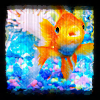 goldfishy!