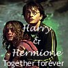 Harry Potter - Harry & Hermione together
