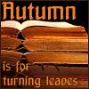 Autumn - leaves