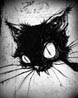 defi_cat userpic