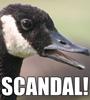 Van: Scandal!