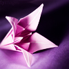 xxpap3r_flow3rs userpic