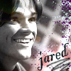 tinkabell007: jared - black pink