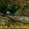 Covenant - Autumn: The Sexy Season