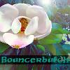 Bouncerbutch