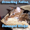 kahva: Crouching Feline Damaged Wicker