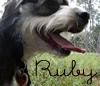 miss_rubydog userpic