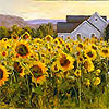 In Different Hues: Sunflower Twilight by Shirley Novak