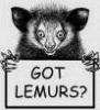 Got lemurs?