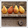 pears by dropsofsunshine