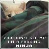 cant see me. ninja