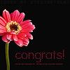 Barbara: Congrats