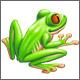 boriquafrog userpic