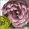 ljfairies userpic
