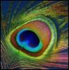 tempo_primo userpic