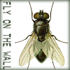 fly on the wall webcomic